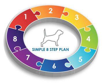 8 Step Plan