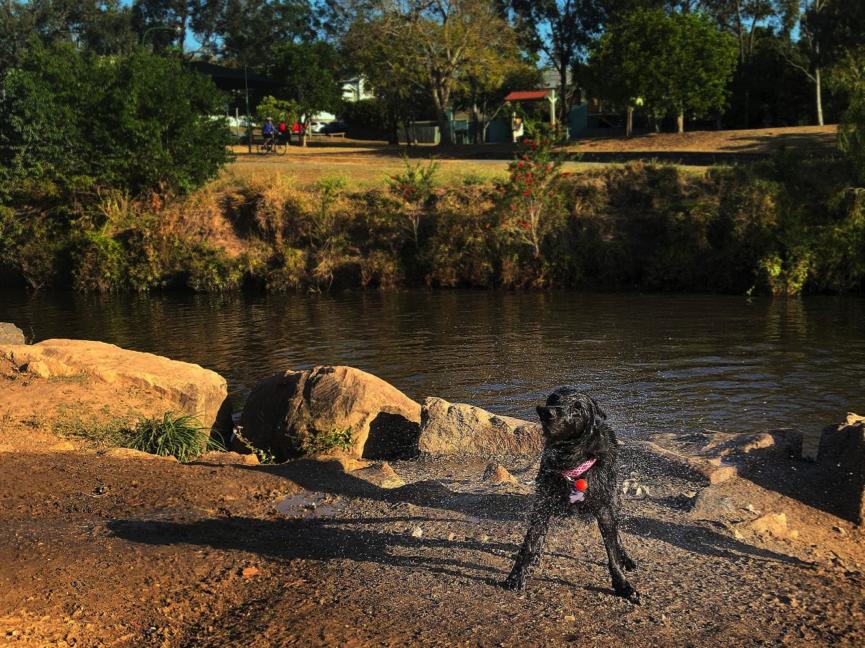 Gordon Park Brisbane